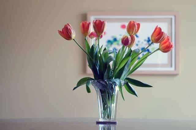flower-vase-438461_640