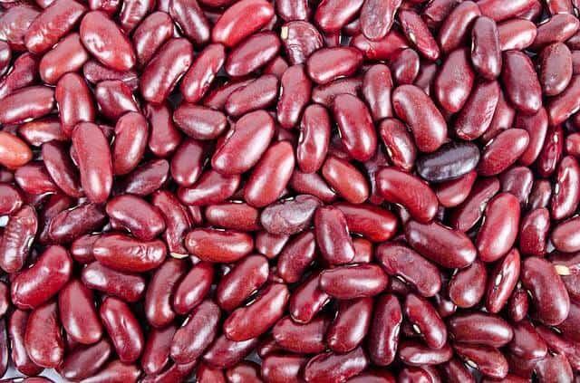 beans-316592_640