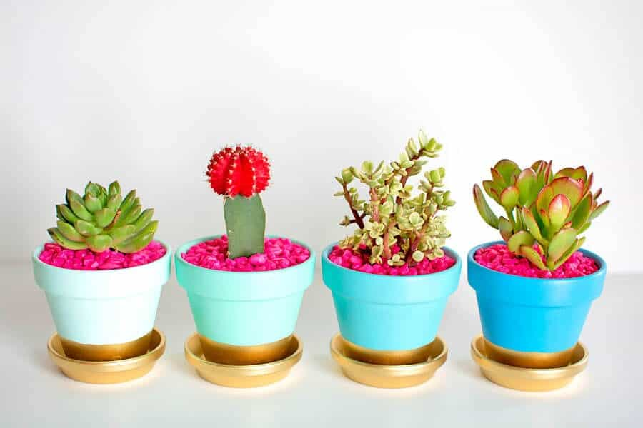 11 Creative And Easy DIY Flower Pots