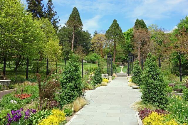 morris-arboretum-174967_640
