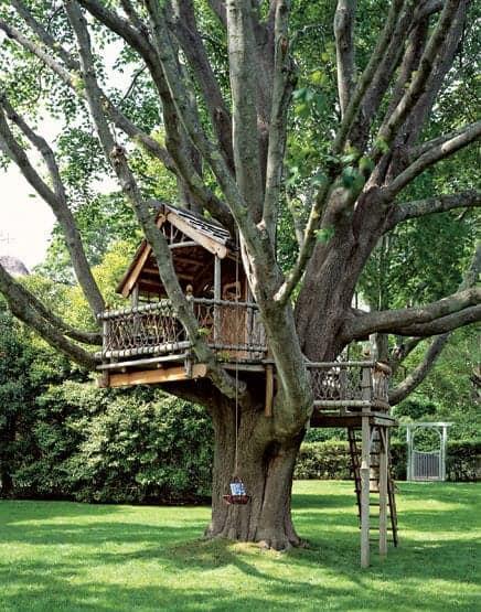 TreehouseAD1