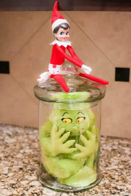 Day 11- Captured Mr Grinch (1 of 1)