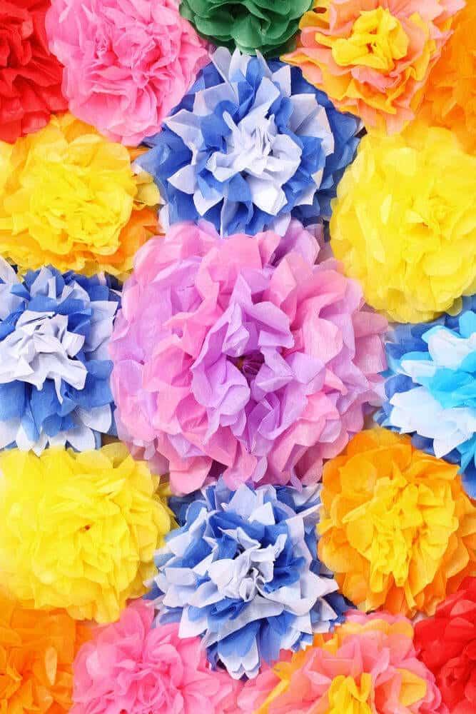 Simple Tissue Paper Flowers