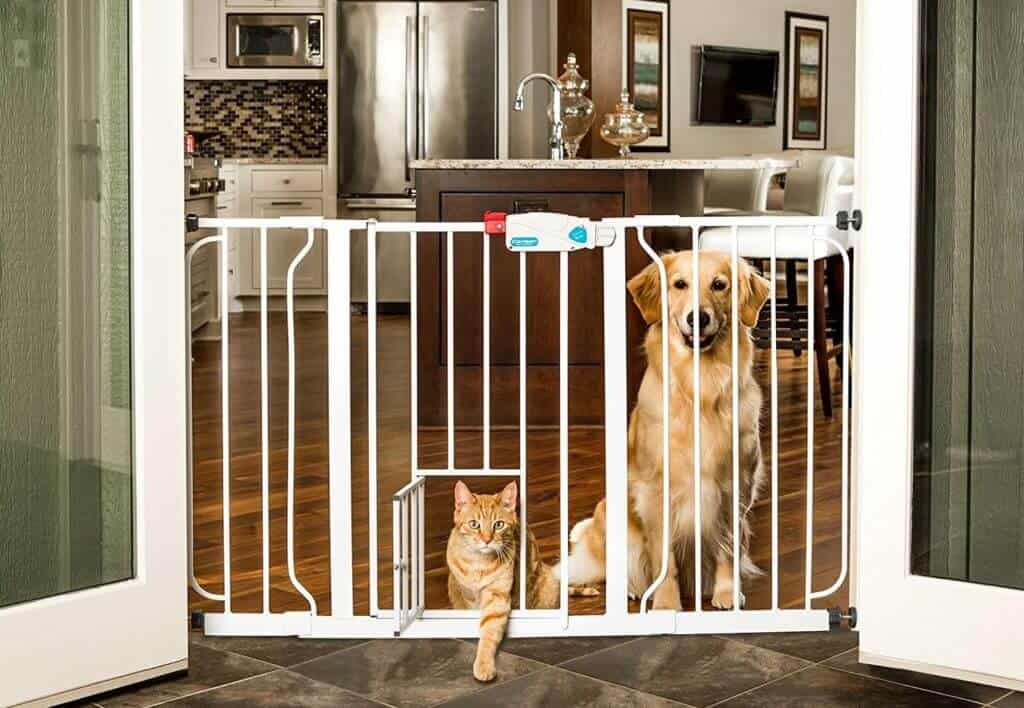 Carlson 44-Inch Extra Wide Walk Through Gate with Pet Door