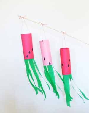 watermelon windsock