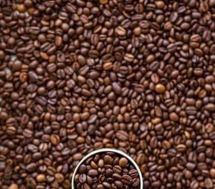coffee that tastes like starbucks