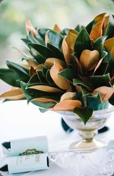 magnolia leaf DIY
