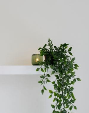 affordable DIYs