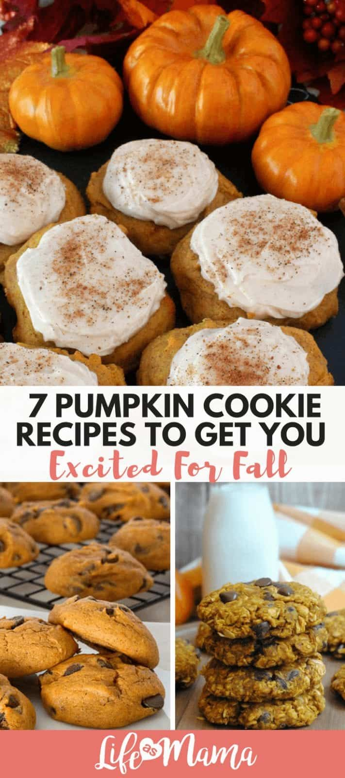 7 Pumpkin Cookie Recipes To Get You Excited For Fall
